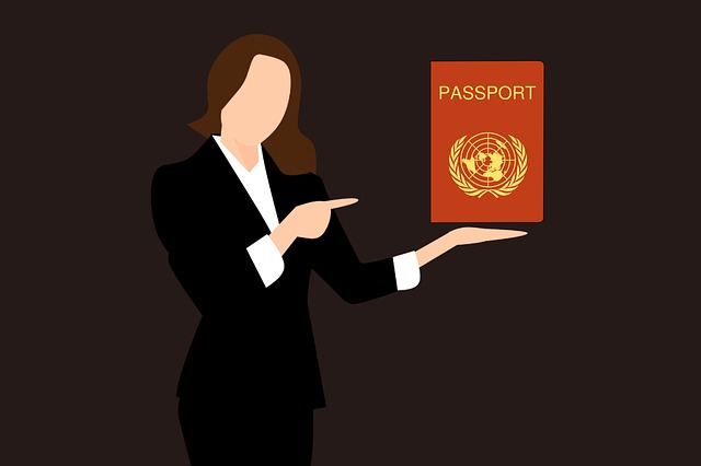 לא עוד התרוצצויות לשגרירות: היום מוציאים ויזה להודו באינטרנט